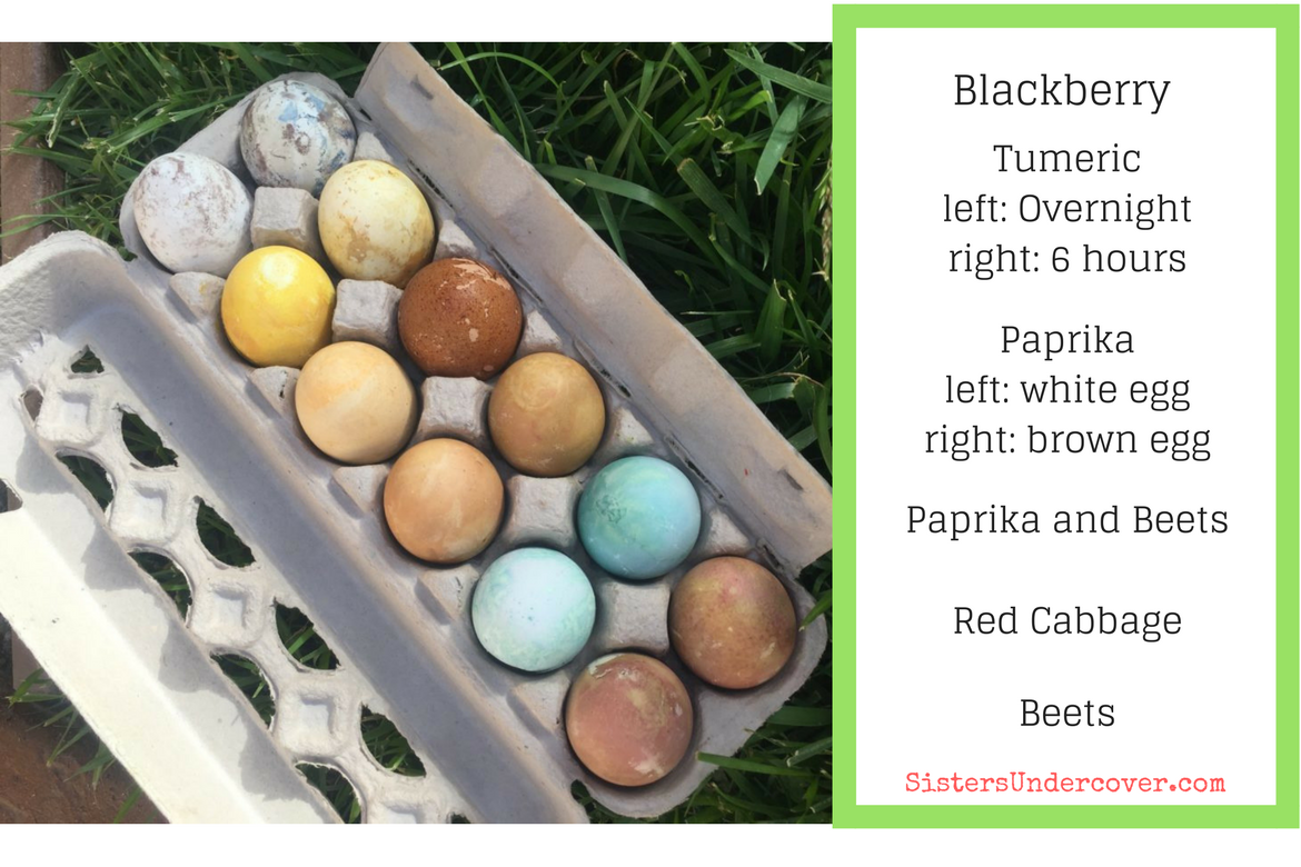 naturally dyed eggs, non toxic eggs, naturally dyed egg results