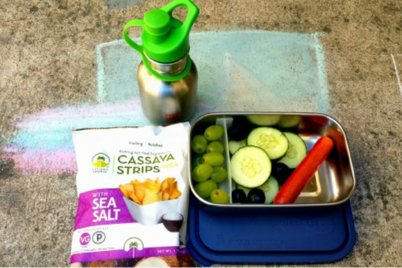 Paleo Lunch Ideas for moms on the go and still want Paleo lunches